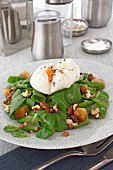 Watercress salad with a poached egg