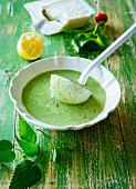 Green spring soup with silken tofu