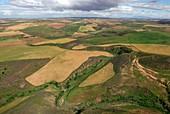 Natural vegetation and agricultural land