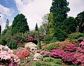 Leonardslee garden