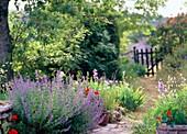 Cottage garden,France