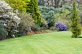 Spring in a botanic garden