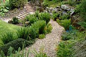 Garden path and steps