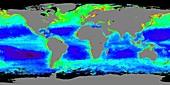 Chlorophyll levels,satellite image