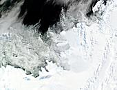 Wilkins Ice Shelf,Antarctica