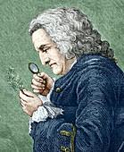 Bernard de Jussieu,French botanist