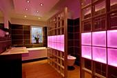 Coloured LED bathroom lights