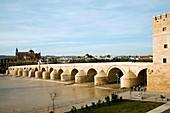 Roman bridge,Cordoba,Spain