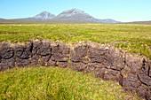 Peat cuttings on Scottish moorland