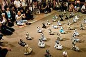 AIBO robot dog convention