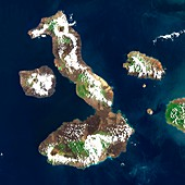 Galapagos Islands,satellite image