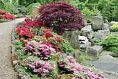 Established Rock Garden