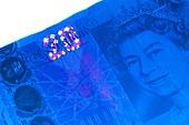 Twenty pound banknote in UV light