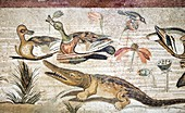 Nile flora and fauna,Roman mosaic