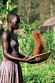 Woman preparing food,Uganda