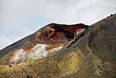 Red Crater volcanic vent,New Zealand