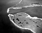 Damage from 1958 Lituya Bay tsunami