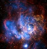 Starbirth region NGC 604,X-ray image