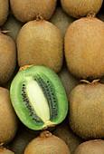 Kiwi fruit (Actinidia deliciosa)