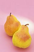 Bartlett Pears (Pyrus communis)