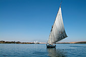 Felucca on the Nile River,Egypt