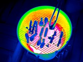 Barbeque,thermogram