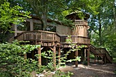 Treehouse Study Centre