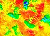 Homo erectus footprints,3D laser scan