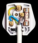 Correctly wired three-pin plug