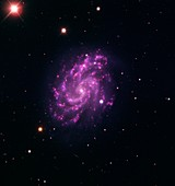Spiral galaxy and supernova