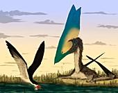 Pterosaur and skimmer bird,artwork