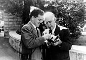 Aage and Niels Bohr,Danish physicists