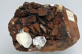 Albite and siderite crystals