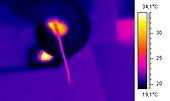 Snake strangling a mouse,thermogram