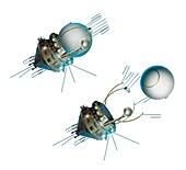 Vostok 1 capsule separation,artwork