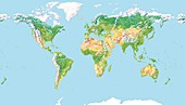 World land cover,global map