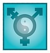 Transgender balance,conceptual artwork