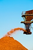 Wood chip production