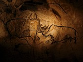 Stone-age cave paintings,Chauvet,France