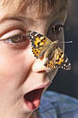 A butterfly landed on a childs nose