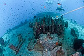 Divers at a shipwreck Ras Mohammed