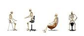 Chair ergonomics,correct postures