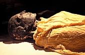 Seti I mummy,Egypt