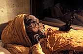 Seqenenre Tao II mummy,Egypt