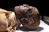 Ramases III mummy,Egypt