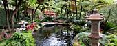 Japanese garden,Madeira