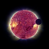 Moon transiting the Sun,STEREO image