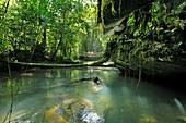 Jungle river,Borneo