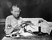 Grace Edwards with insect models