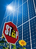 Solar power as alternative to nuclear